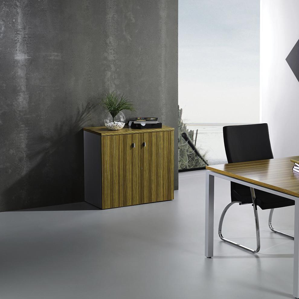 Armario oficina 810x800x430mm puertas abatibles ricardo for Armario oficina