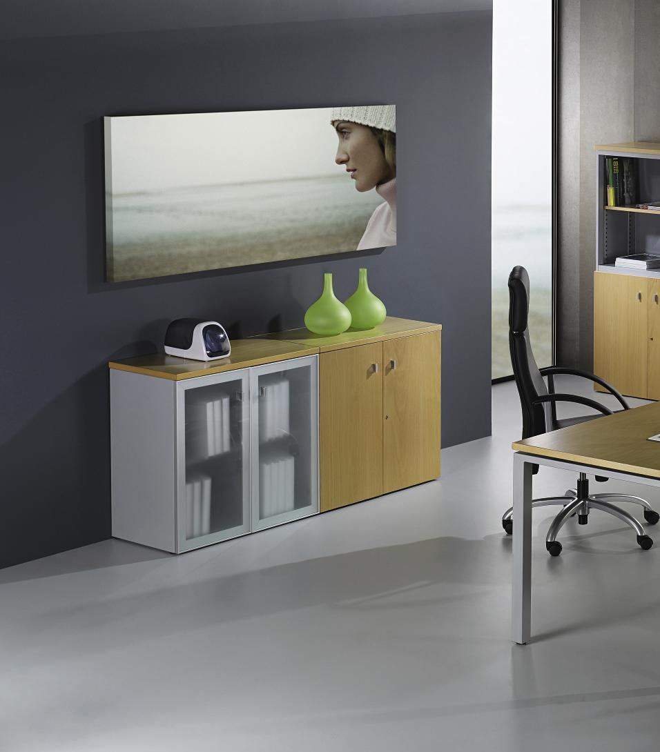 Armario oficina 810x800x450mm puertas abatibles ricardo for Armario oficina